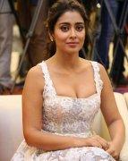 Gallery Shriya Saran Film Actress 3775