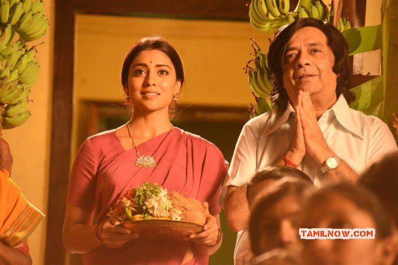 Heroine Shriya Saran Pic 6372