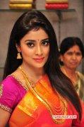 Heroine Shriya Saran Stills 7958