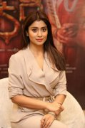 Indian Actress Shriya Saran Still 7810