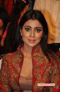 Jul 2015 Wallpaper Shriya Saran Tamil Actress 8610
