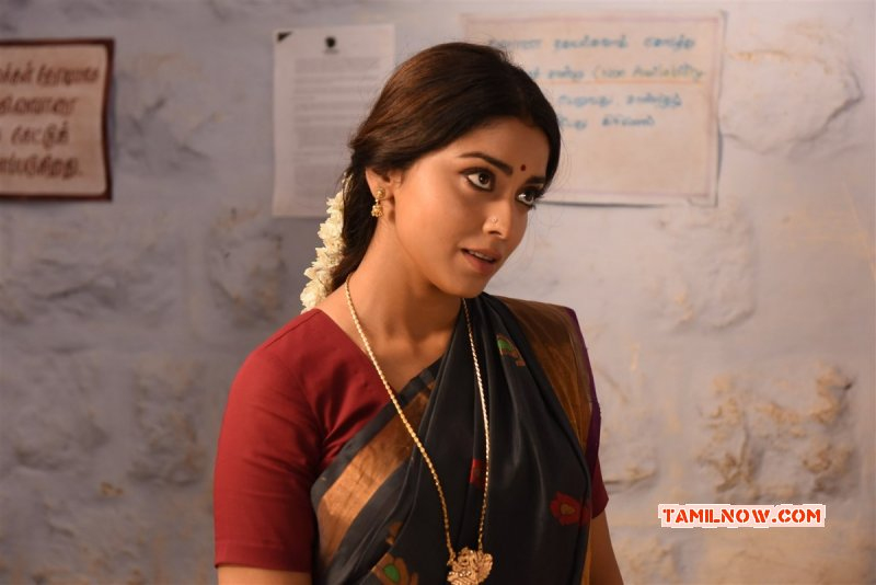 Latest Picture Tamil Movie Actress Shriya Saran 6705