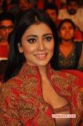 Movie Actress Shriya Saran Latest Stills 2703