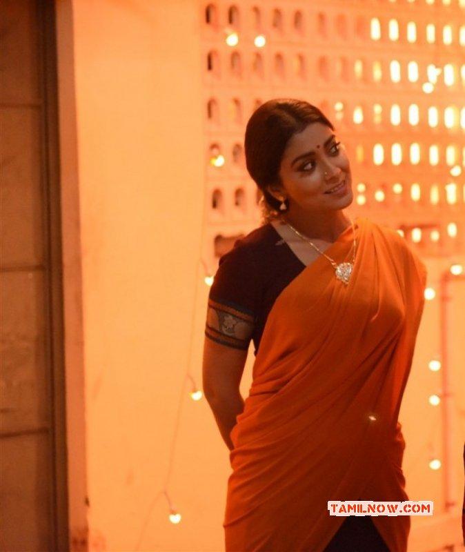 Movie Actress Shriya Saran Recent Images 5403