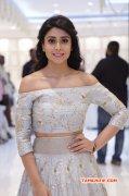 Recent Pics Shriya Saran Film Actress 6760
