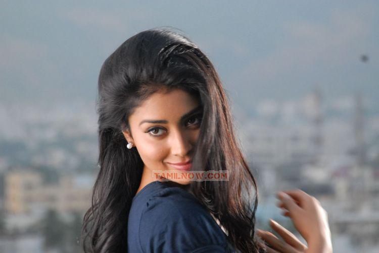 Shriya Saran 2011