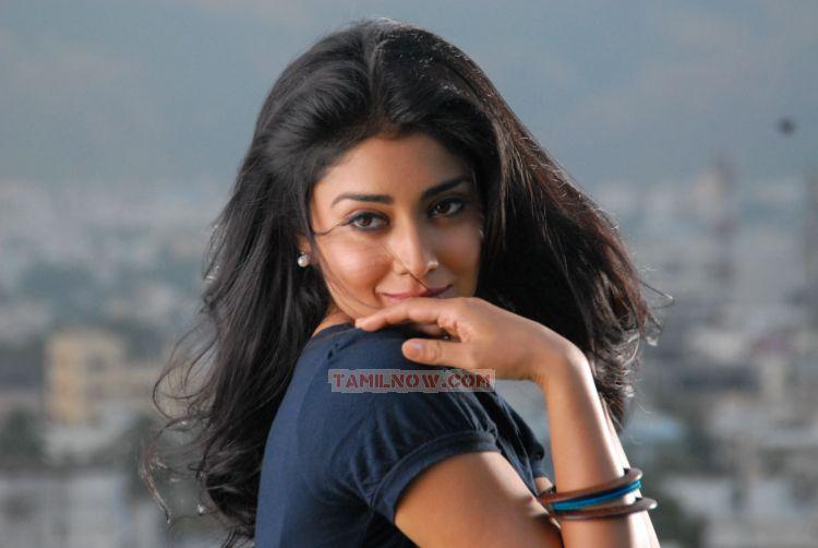 Shriya Saran 3524