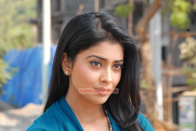 Shriya Saran 3771