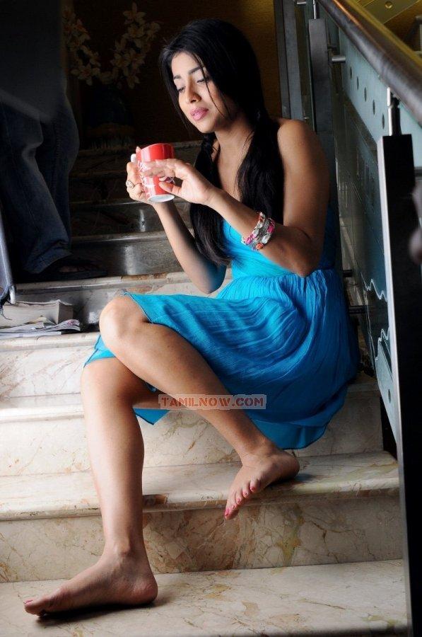 Shriya Saran 4505