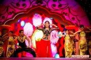 Shriya Saran 4997