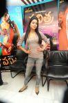 Shriya Saran 5839