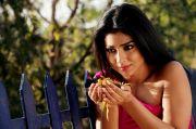 Shriya Saran 6166