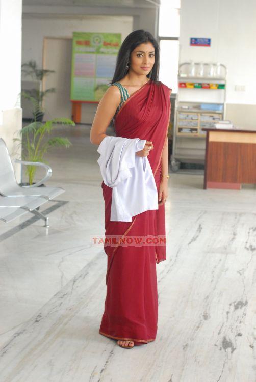Shriya Saran 7526