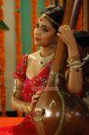 Shriya Saran 8038