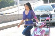 Shriya Saran 9650