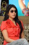 Shriya Saran 9818