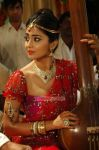 Shriya Saran 9910