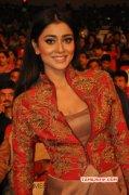 Shriya Saran Actress Jul 2015 Pics 7731