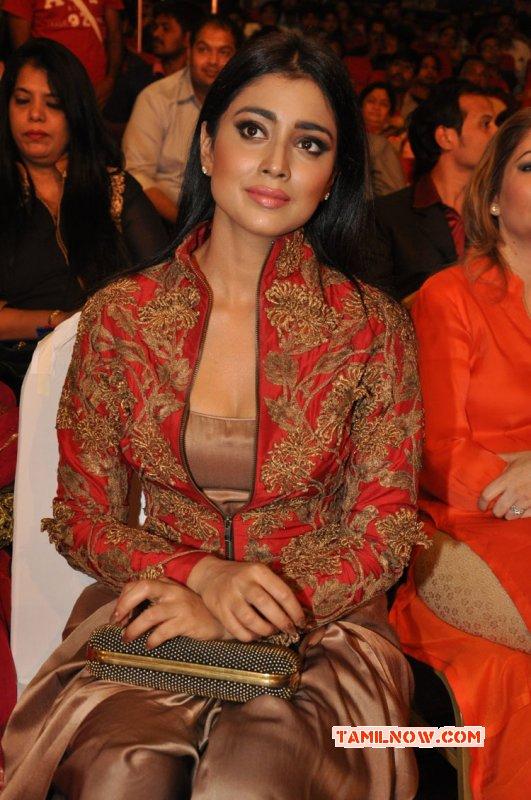 Shriya Saran Cinema Actress Recent Gallery 9407