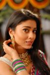 Shriya Saran Photos 2337