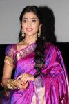 Shriya Saran Photos 2478