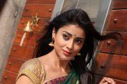 Shriya Saran Photos 4525