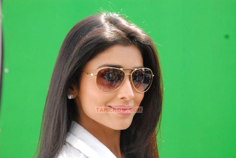 Shriya Saran Photos 4806