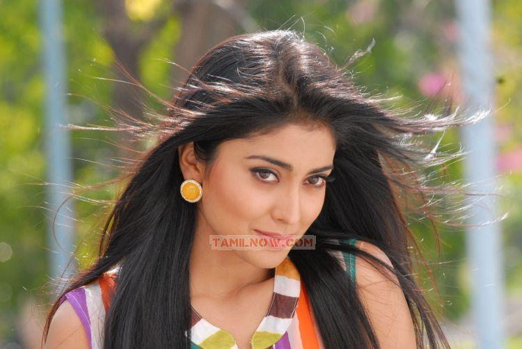 Shriya Saran Photos 5638
