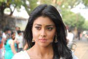 Shriya Saran Photos 730