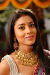 Shriya Saran Stills 1447