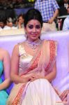 Shriya Saran Stills 433