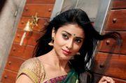 Shriya Saran Stills 8741