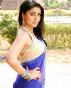 Shriya Saran Tamil Movie Actress Latest Albums 1592