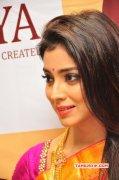 South Actress Shriya Saran 2015 Images 9515