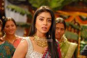 Tamil Actress Shriya Saran 711