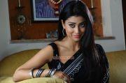 Tamil Actress Shriya Saran 7131