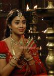 Tamil Actress Shriya Saran 7169