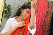 Tamil Actress Shriya Saran 7857