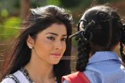 Tamil Actress Shriya Saran 9343