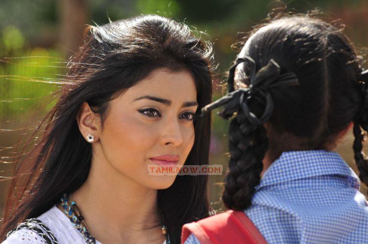 Tamil Actress Shriya Saran 9343