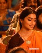 Tamil Actress Shriya Saran Jun 2017 Photo 8431
