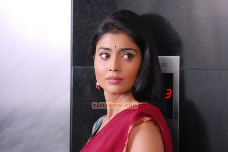 Tamil Actress Shriya Saran Photos 1224