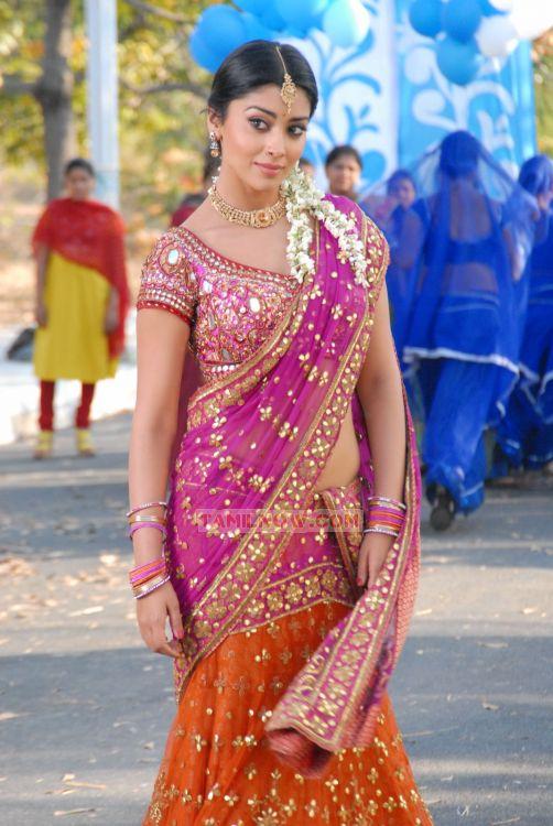 Tamil Actress Shriya Saran Photos 5720