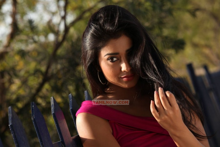 Tamil Actress Shriya Saran Photos 7473