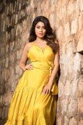 Tamil Heroine Shriya Saran Apr 2020 Pictures 8184