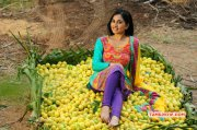 Srushti Dange New Gallery 927