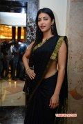 2014 Galleries Indian Actress Shruthi Haasan 3652