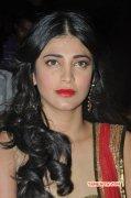 2014 Images Film Actress Shruthi Haasan 4703