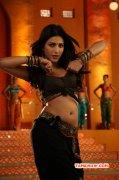 2016 Galleries Movie Actress Shruthi Haasan 799