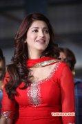 Actress Shruthi Haasan Mar 2016 Photos 8087